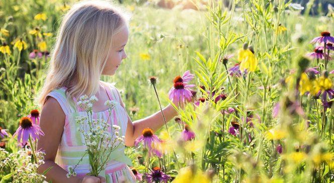 MAG 4 KIDS – развийте бизнеса си с детски дрехи успешно