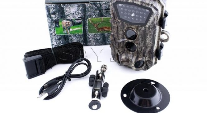Най-добрите функции на нашумелите ловни камери – ето защо си заслужава инвестицията